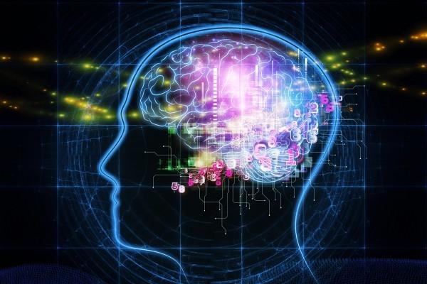 脳科学や心理学をベースとした、様々な療法が詰まったカリキュラム